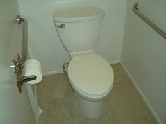 New Toilet Installation
