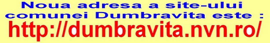 Comuna Dumbravita - Maramures