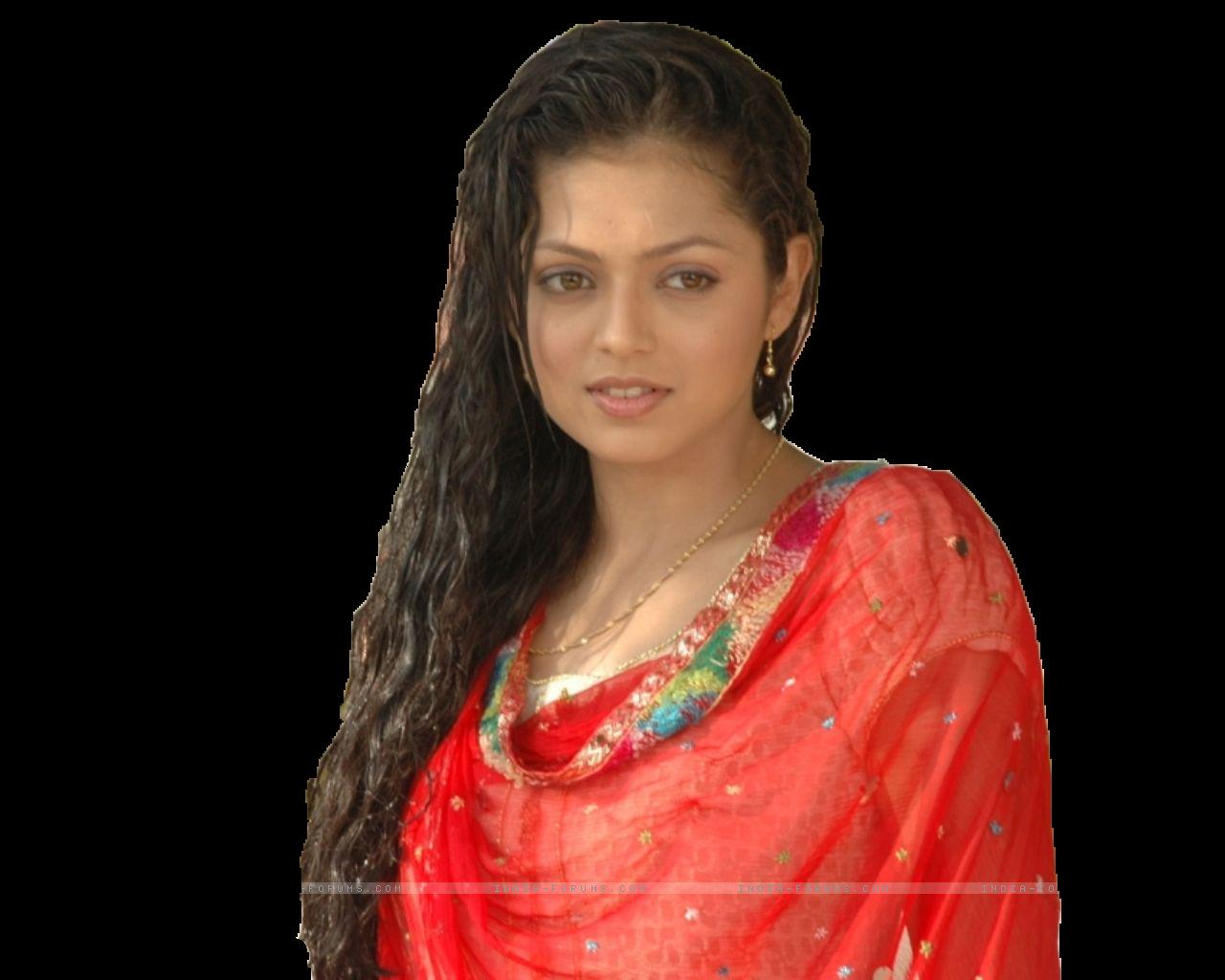 transparent saree boobs