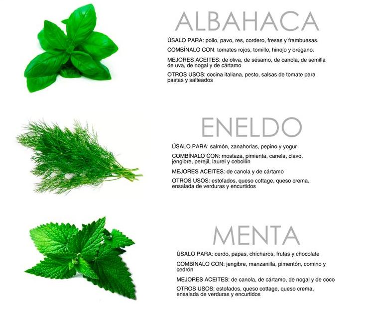 Cultivar el huerto casero hierbas para cultivar dentro - Plantas aromaticas en la cocina ...