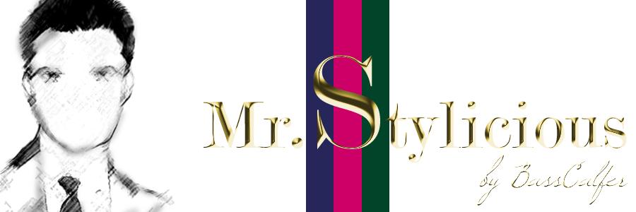 Mr.Stylicious