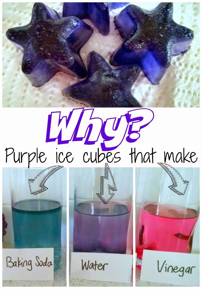 Make Your Own pH Indicator Using Red Cabbage