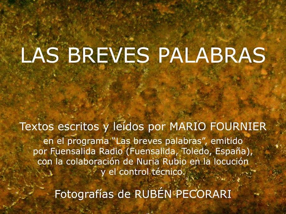 LAS BREVES PALABRAS - MARIO FOURNIER