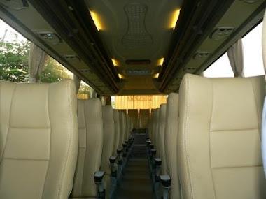 Interior  bus 2011