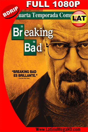 Breaking Bad Temporada 4 (2011) Latino Full HD BDRIP 1080P ()