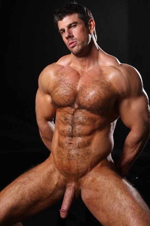 Gay Hairy Muscle Bear Porn