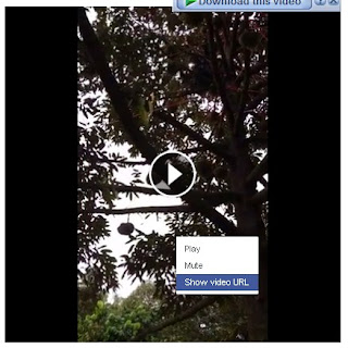 _3_Klik Kanan Video Facebook