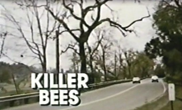 Killer Bees Movie 1974 Killer Bees is an Abc Movie