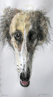 Borzoi...  Pen and Ink / Watercolor