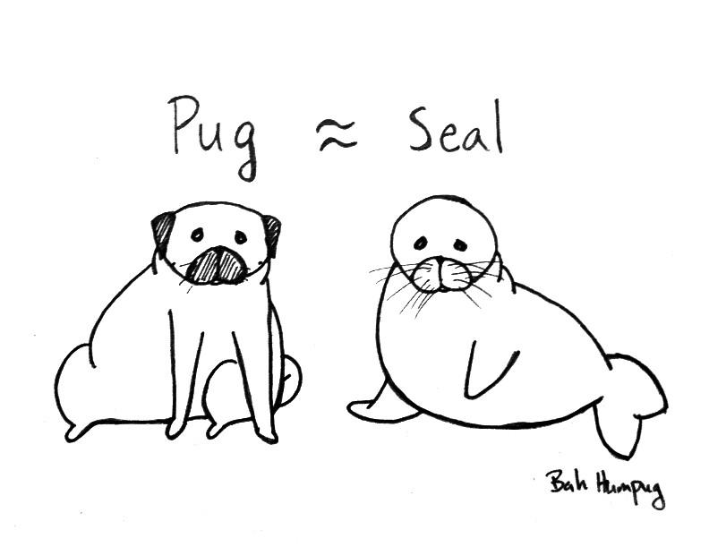 Pug Dressed as Seal Seal Pug