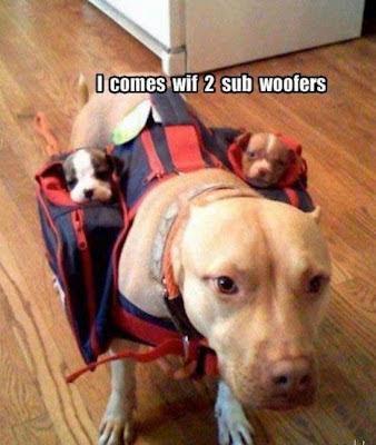 Sub Woofers - Funny Stuff