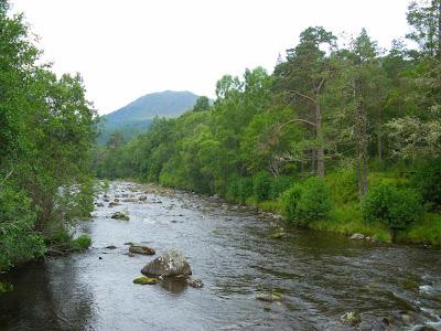 Glen Affric, Highlands, Scotland, Escòcia, Regne Unit, United Kingdom