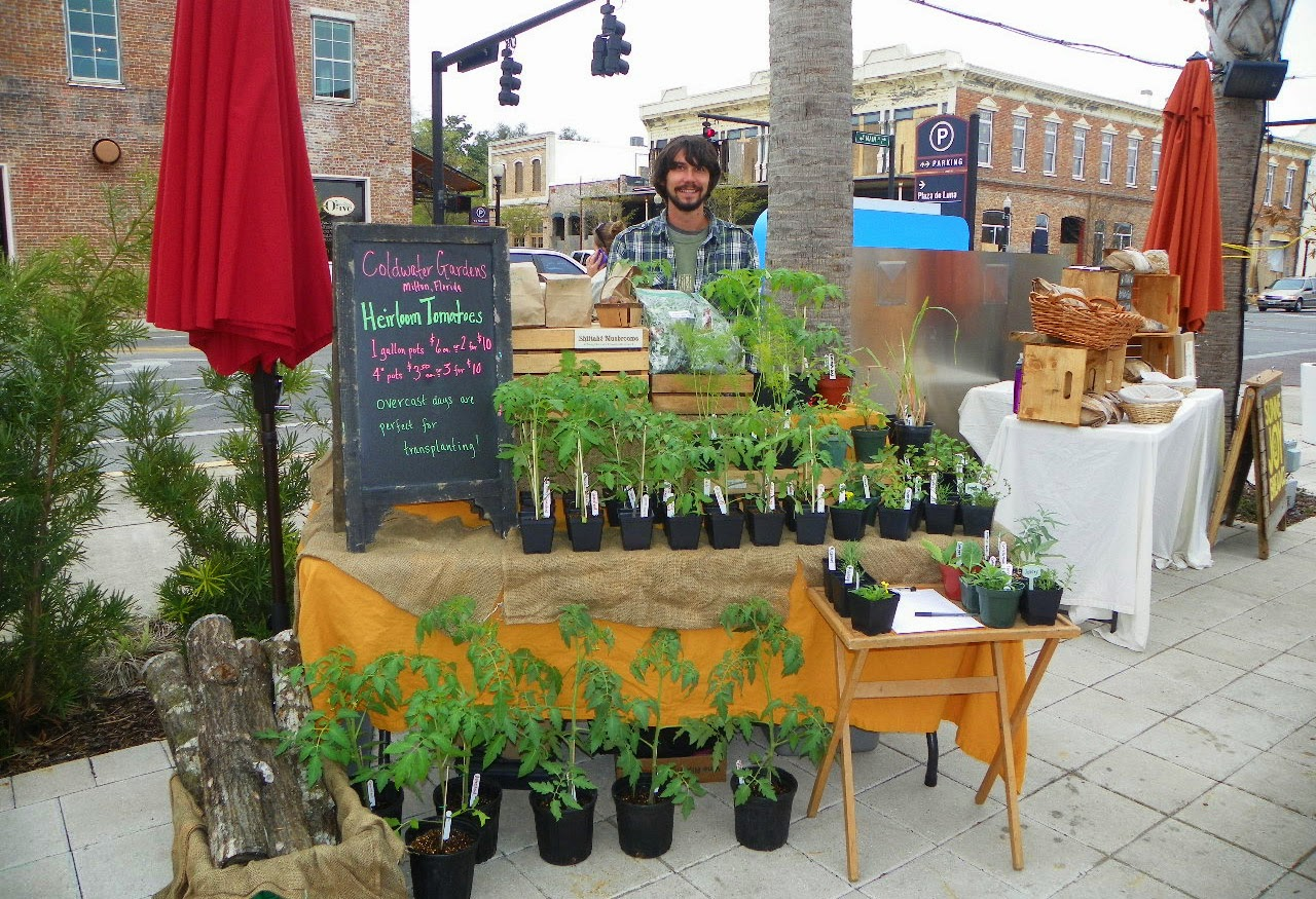 Local Produce, herbs and plants sold at the Market at Al Fresco in Downtown Pensacola!