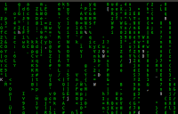 cmatrix command in linux