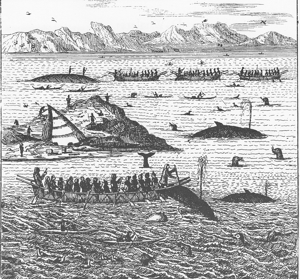 Whaling N Greenland By Hans Egede 1741 The Triangular Object At Left Center Is A Hunting Camp Tent
