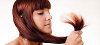 Saç Kırıkları İçin Yağ