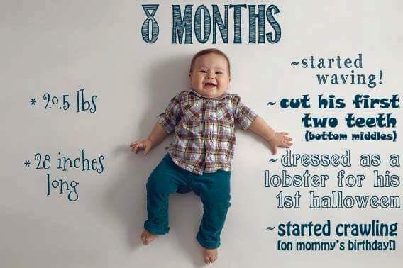 Baby-Growth-Month-08-Crawling