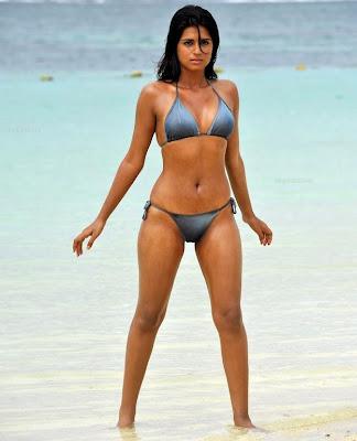 Shraddha Das Hot Bikini