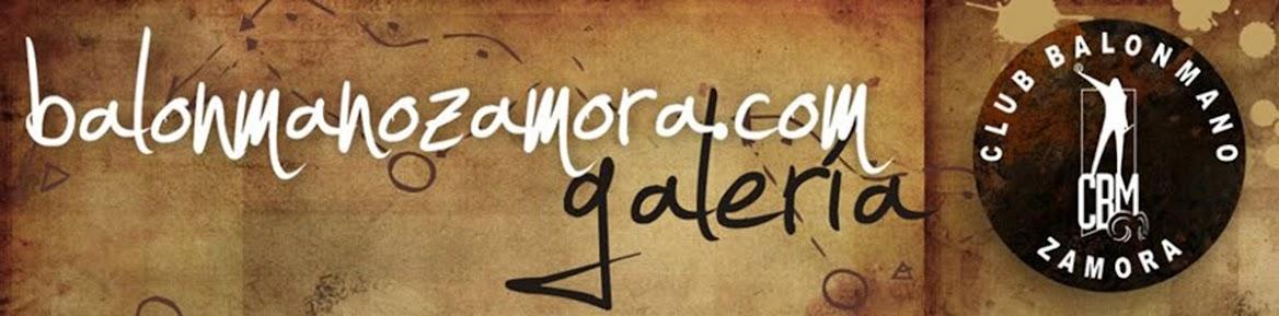 Galería Balonmano Zamora
