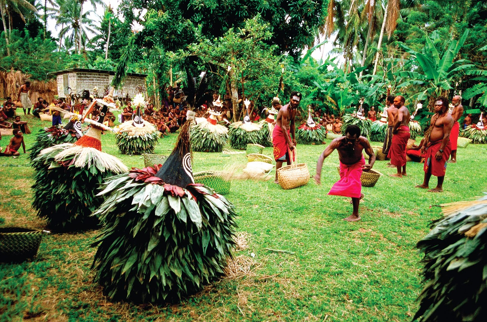 Tribal dancing in Tufi