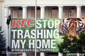 Η «μυστική συνταγή» της KFC: καταστροφή των τροπικών δασών