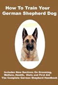 How Good Is Your German Shepherd Dog?