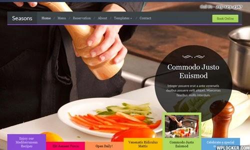 Seasons WpZoom Premium Wordpress Theme Version 1.0 free