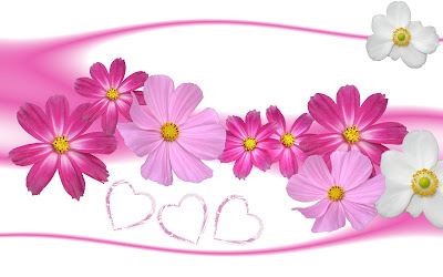 Flowers Wallpapers 2014