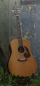 Helen's Guitar