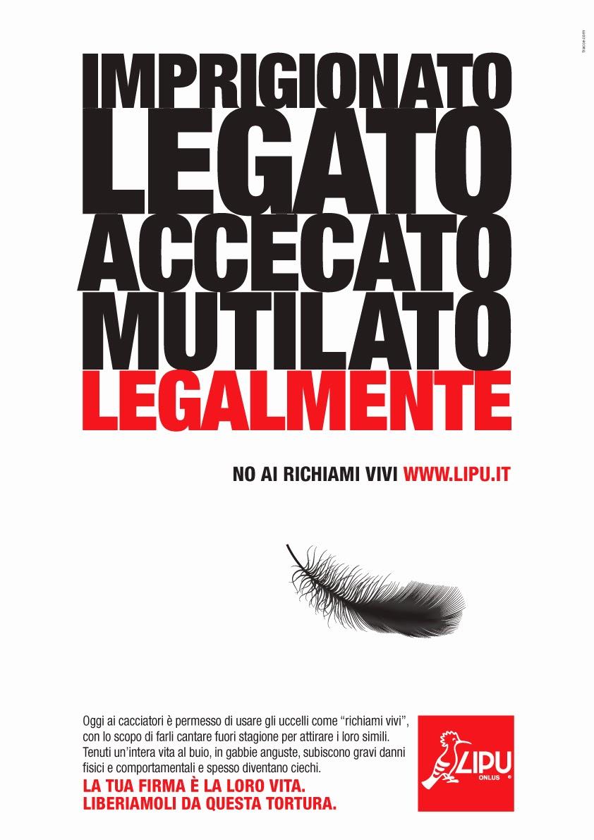 NO AI RICHIAMI VIVI! - FIRMA LA PETIZIONE