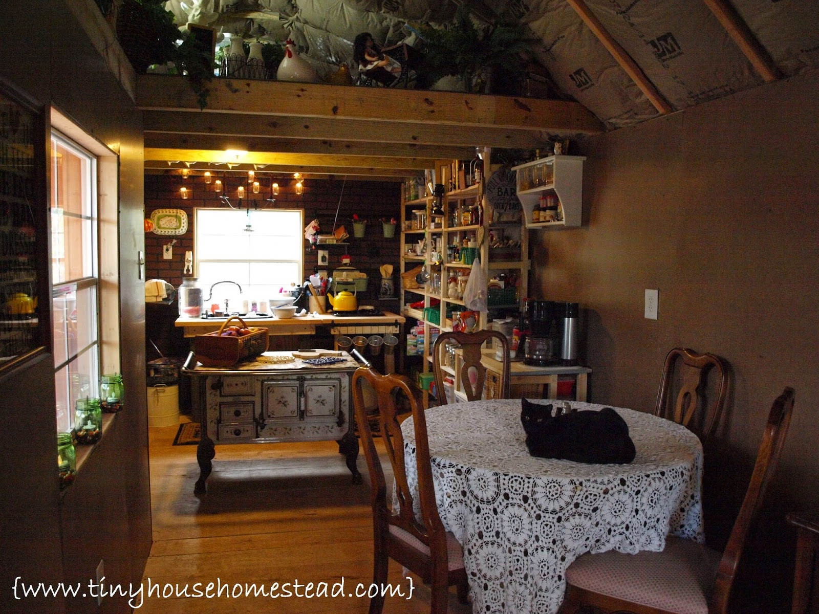 Tiny house homestead living in a tiny house or shouse for Shouse shed house