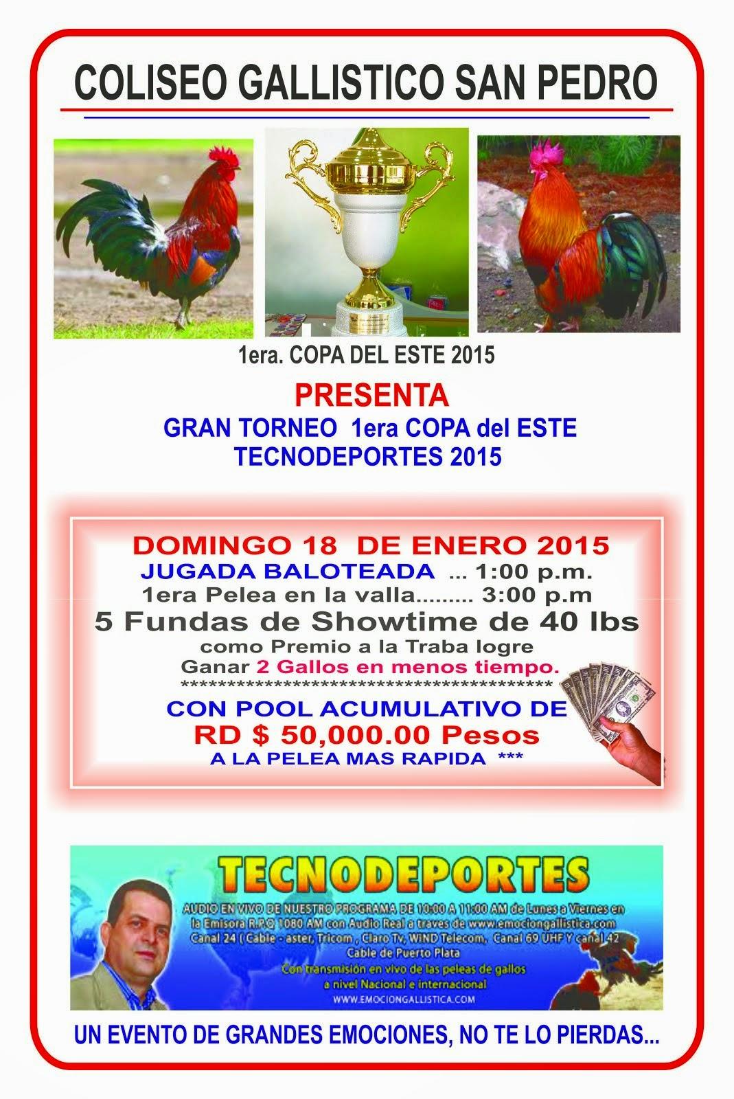 1ER TORNEO COPA DEL ESTE TECNODEPORTES 2015 PROXIMO DOMINGO 18 DE ENERO