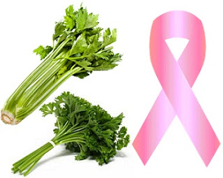 Celery and parsley reduce the risk of breast cancer