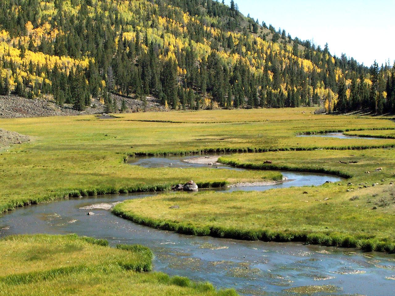 Southern Utah Hunt And Fish Outdoor Places Fish Lake Utah