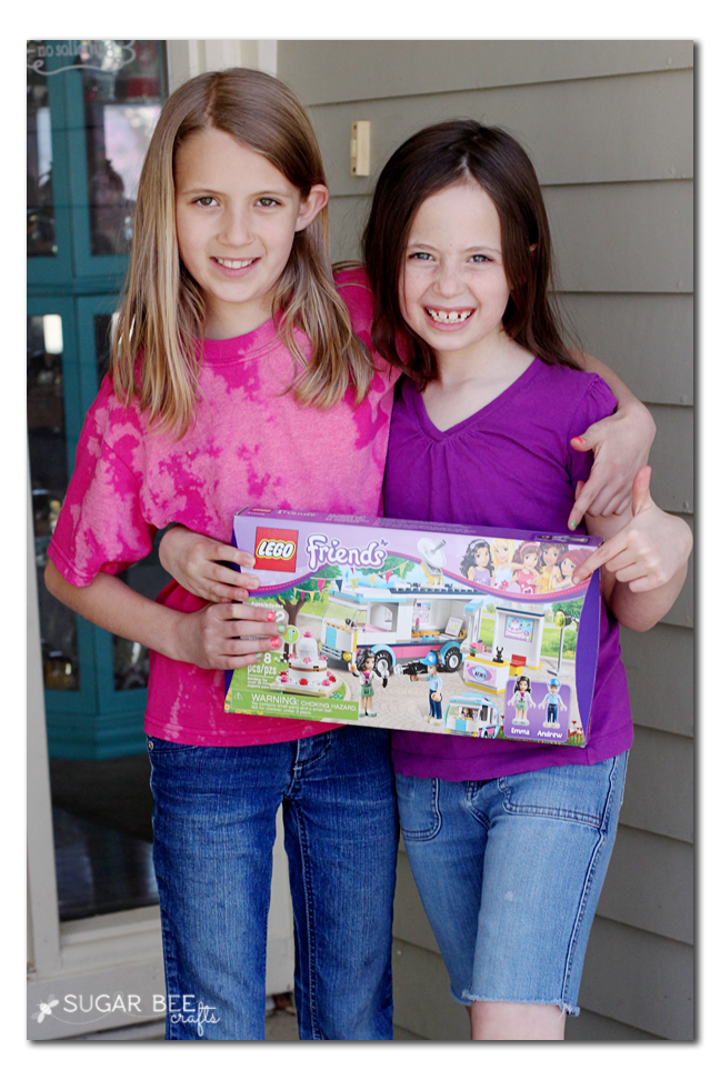 lego+friends+sisters.png