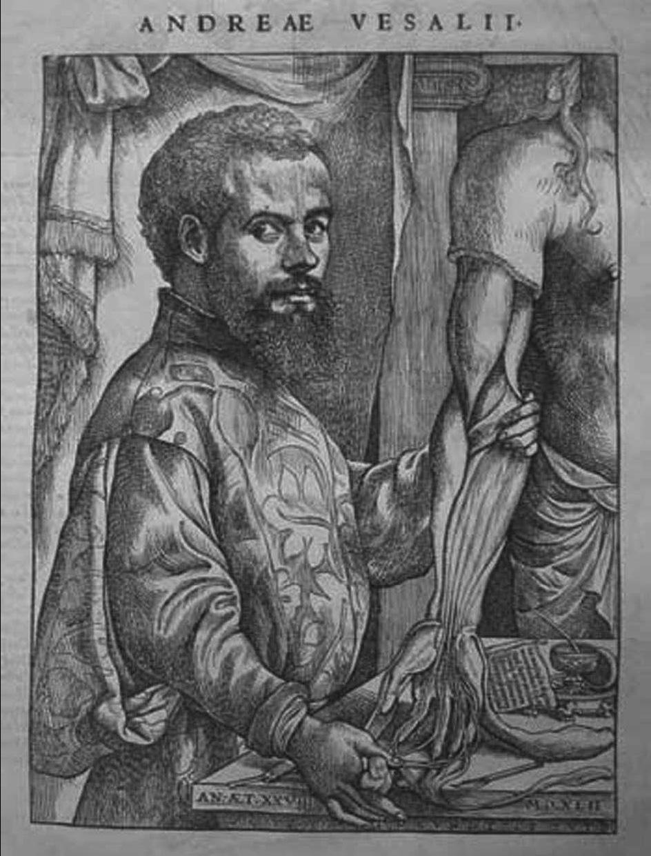 La Escalera de Iakob: Vesalio, el padre de la anatomía moderna