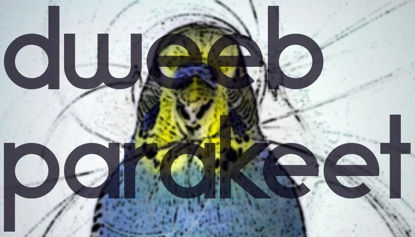 Dweeb Parakeet