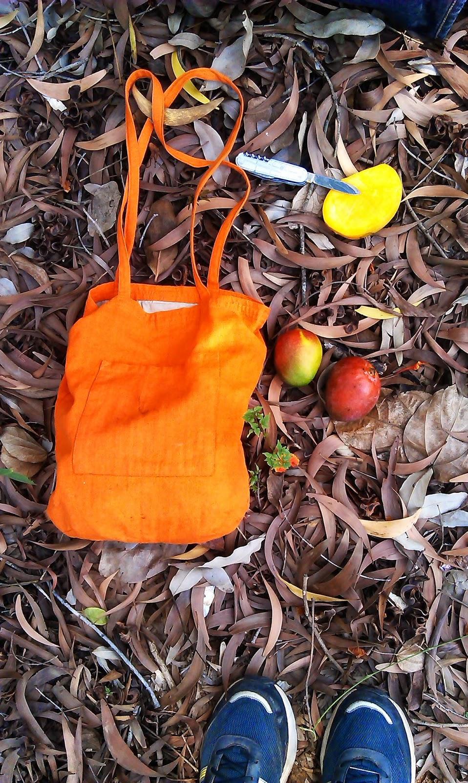 Horn OK Please: mango season