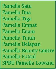 Pamella Group