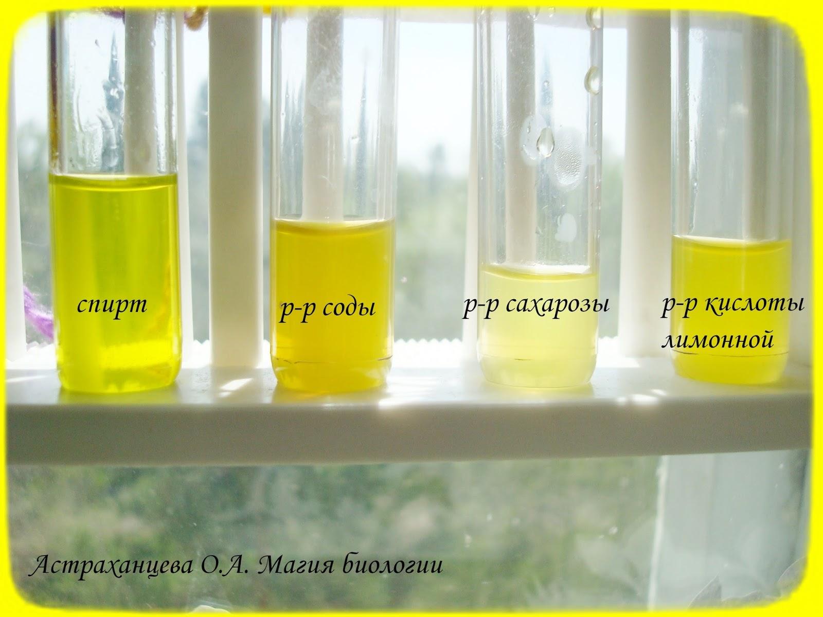 Аскорбиновая кислота как сделать раствор
