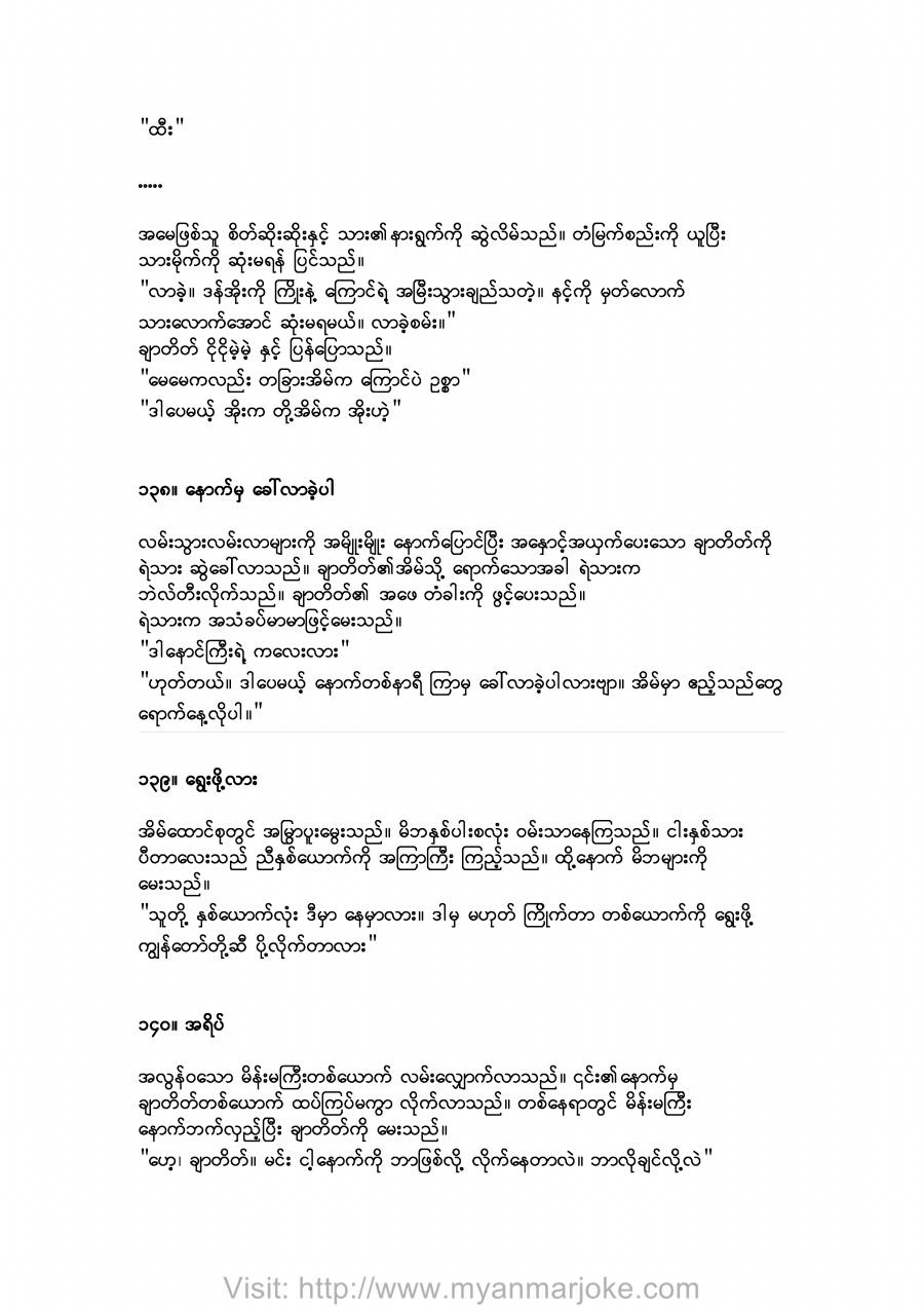 The Shadow,burmese jokes