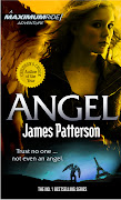 The seventh novel in the bestselling Maximum Ride series