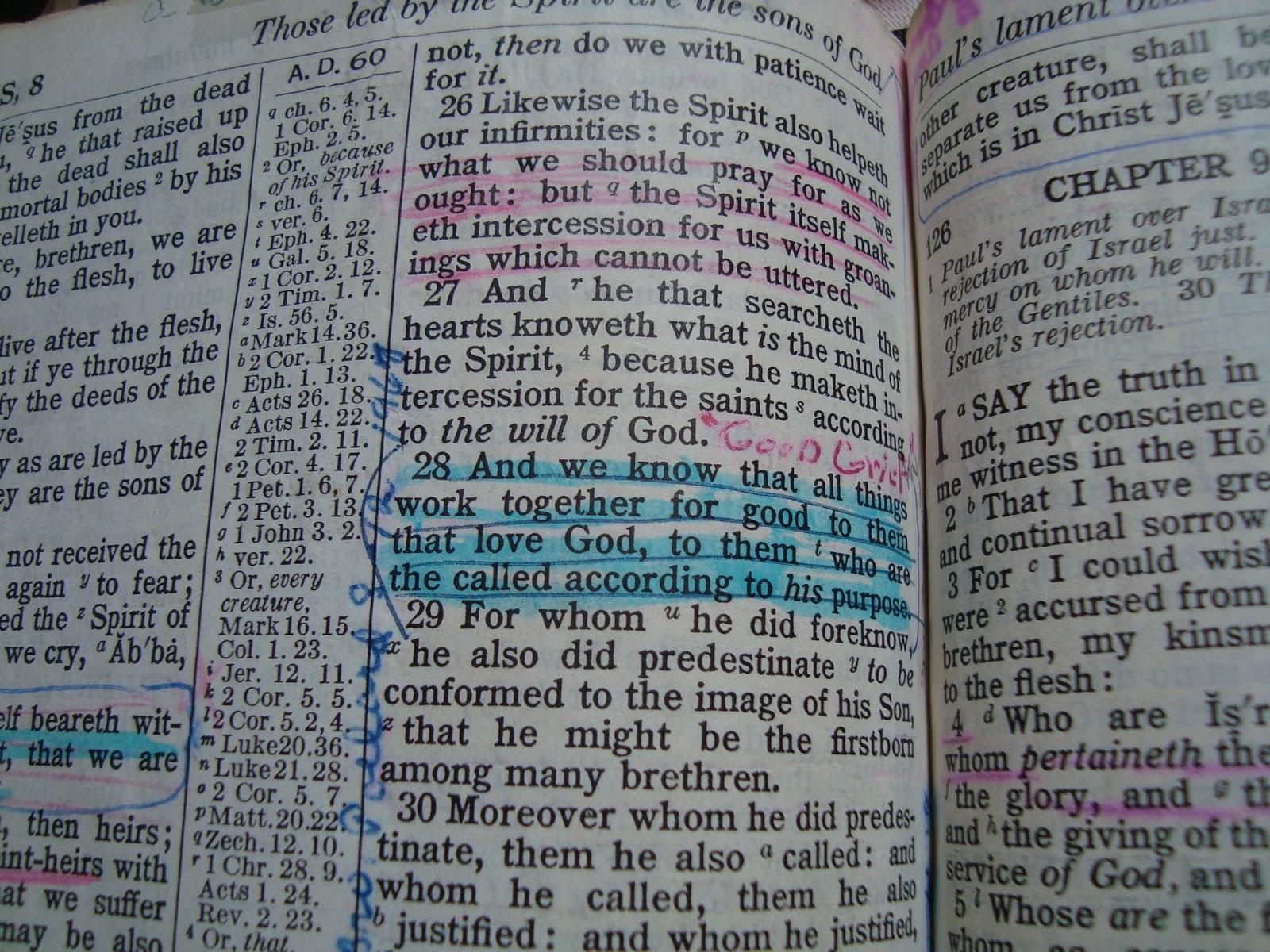 riverwoods ramblings my mother u0027s bible