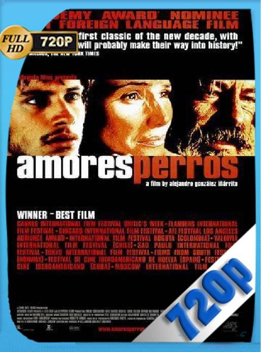 Amores Perros (2000) HD [720p] [Latino] [GoogleDrive] [RangerRojo]
