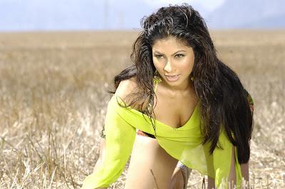 tanisha mukherjee glamour  images