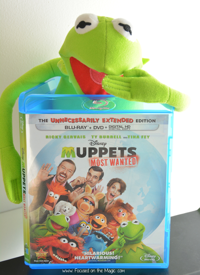 Faux Kermit watched Muppets Most Wanted