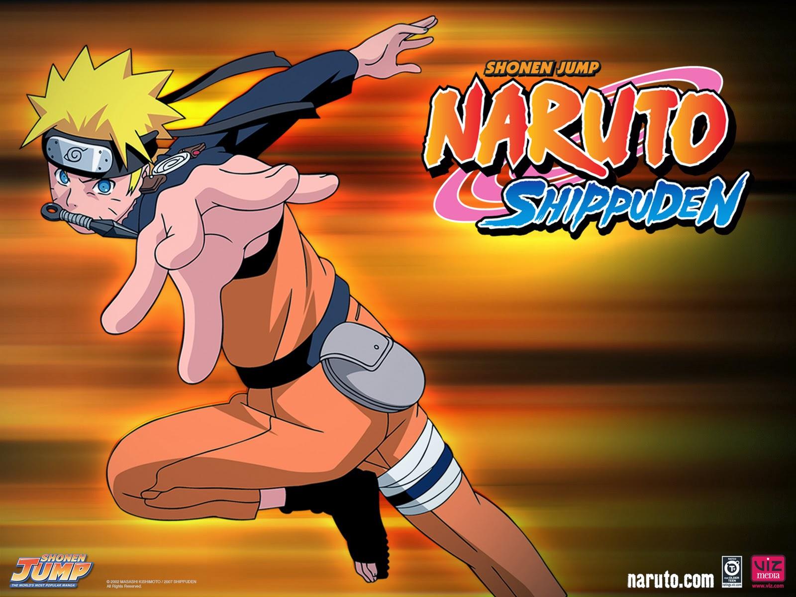 Naruto Shippuden 293 Mf