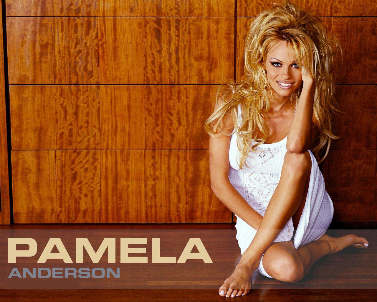 http://1.bp.blogspot.com/-yna-vaOoqxE/UQK1R7VHRvI/AAAAAAAAAyE/h52rrZkAGHA/s1600/pamela+anderson+2013+wallpapers+01.jpg