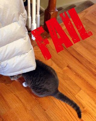 Cat Fail hides