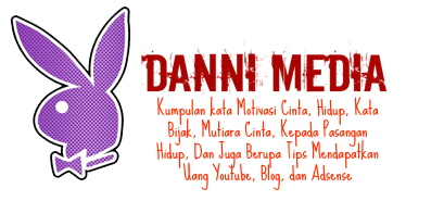 Danni Media